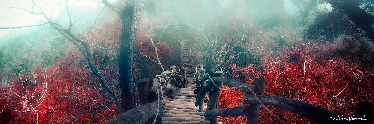 Limited edtion, Fine Art, An Empty Street, Alexander Vershinin, mountains trails, wooden bridge, Taiwan photography, photo