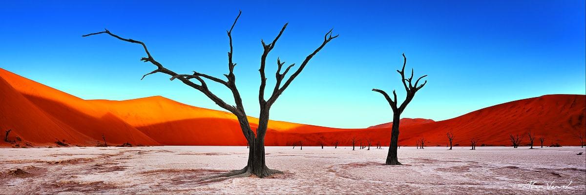 African Landscape Photography, Faded Fantasy, Alexander Vershinin, Namib desert, dead trees forest, Namibia, photo