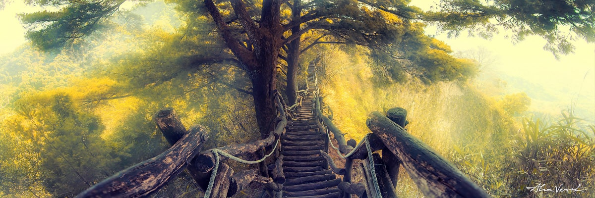Limited edtion, Fine Art, Into The Fall, Alexander Vershinin, Taiwan Photography, Dakeng, mountain trails, wooden bridge, photo