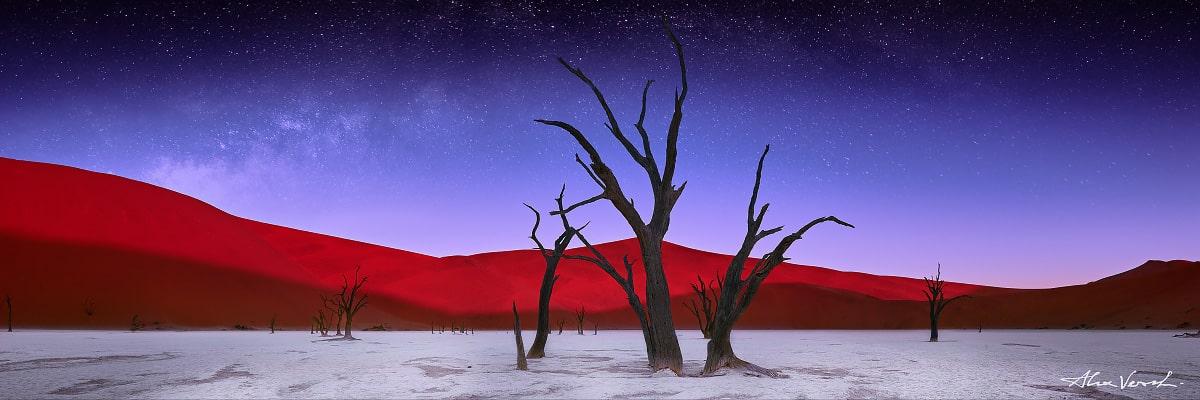 Namibia Photography, Fine Art, Rise A Night, Alexander Vershinin, dead forest, deadvlei, namibia, starry night, stellar desert, photo