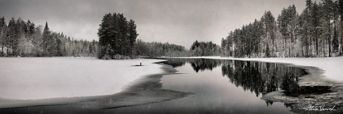 Sweden Photography, The Legacy, Alexander Vershinin, winter forest, wood reflection, wormwood, photo